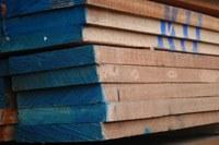 Beuken ruw hout bij de houthandel
