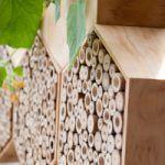 insectenhotel of bijenhotel