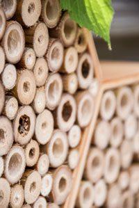 zelf een bijenhotel maken